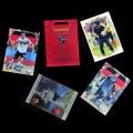 2018 AMPIR FIFA World Cup Soccer Team GERMANY (21 cards)