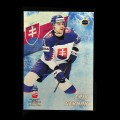 2019 AMPIR IIHF World Championship #SVK21 Erik Cernak (Team Slovakia)